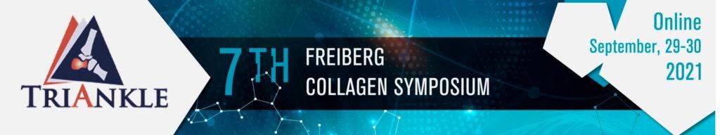 Presentation of TriANkle at the Freiberg Collagen Symposium